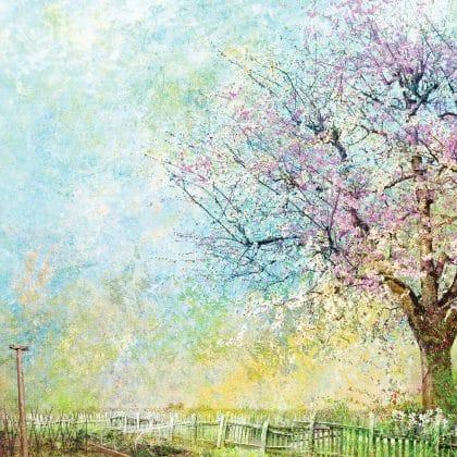 RHS Spring Garden Illustration