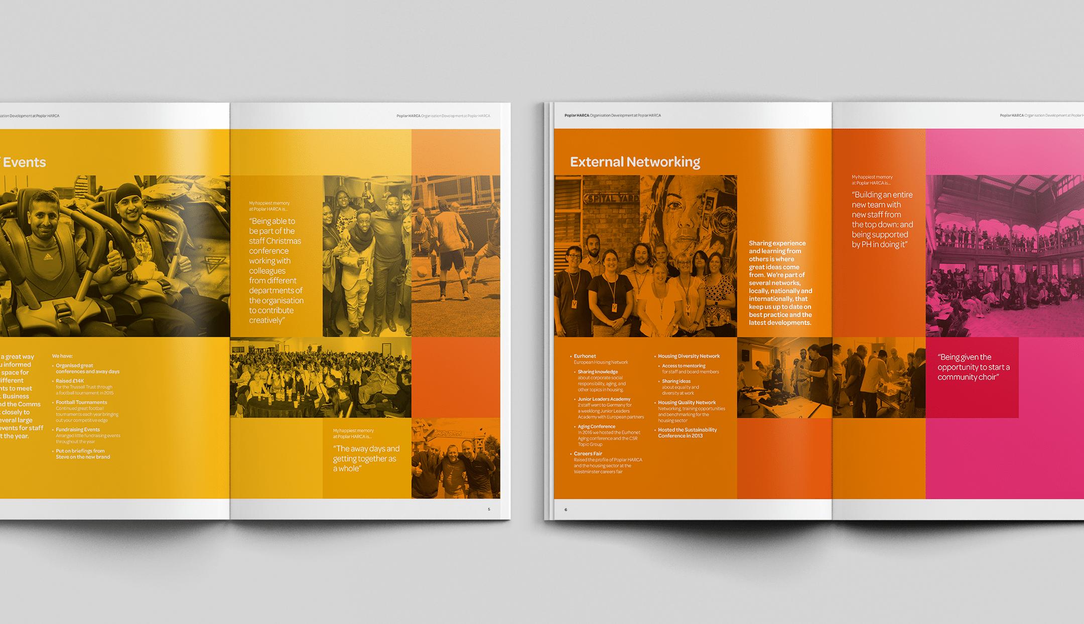 Organisation Report Graphic Design